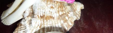 Fluide précieux à la Rose Musquée du Chili et Rose de Bulgarie