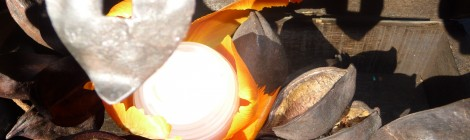 Trésor  d'Orient … la chaleur du Patchouli, les rondeurs de l'orange et la caresse de la fleur d'oranger