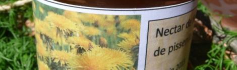 Le nectar de Fleurs de Pissenlits