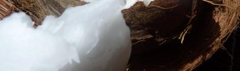 Baume carrément «coco»
