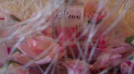 Rose Tendresse – Pink Tenderness