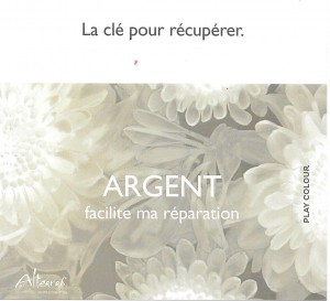 fiche  JArgent F