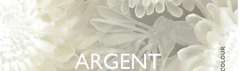 Argent Réparation – Silver Repair