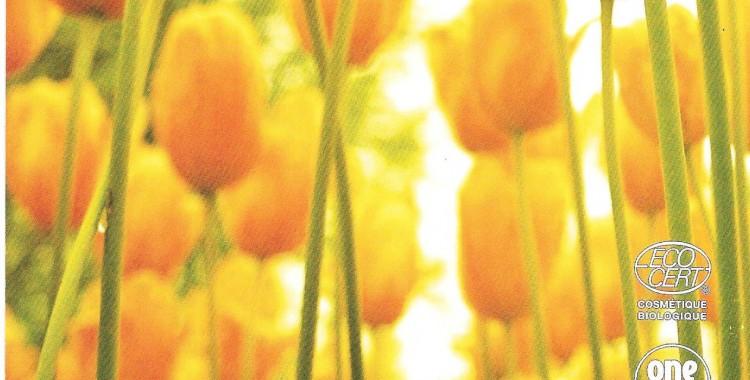 Minceur et Confiance le mariage de l'Or et de l'Orange