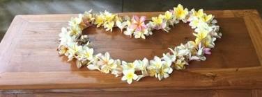 L'Huile «Or» en voyage à Bali Terima Kashi