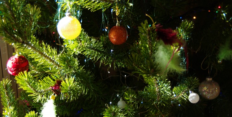 Dans la Hotte du Père Noël ….