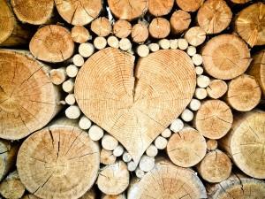 heart-1288420_960_720