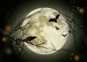 halloween-72939_960_720