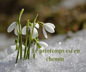 Le printemps est en chemin
