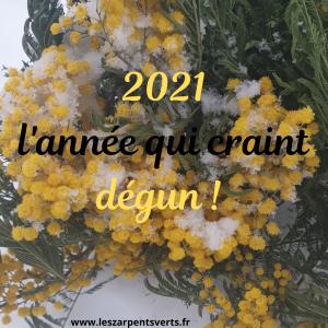 2021 l'année qui craint dégun !