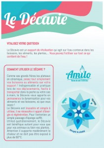 Flyer DECAVIE-page-001
